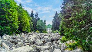 Vitosha Mountain - Golden Bridges